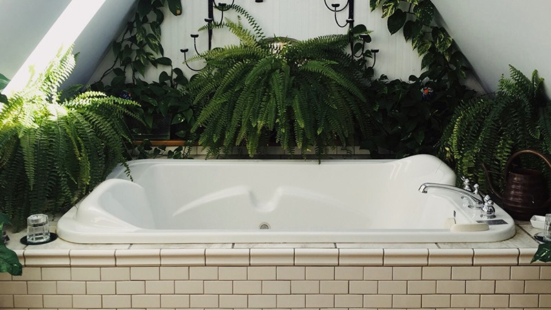 Déco végétale salle de bain